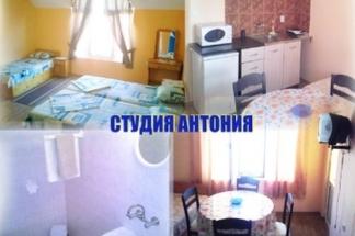 Studia_Antonija