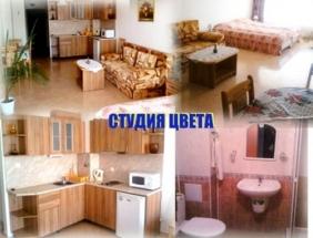 Studia_Cwieta
