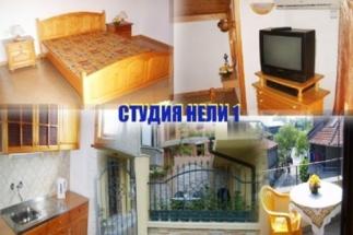 Studia_Neli_1