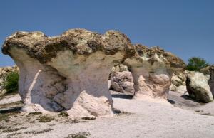 Каменните гъби, с. Бели пласт